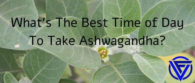 What's The Best Time Of Day To Take Ashwagandha? (Morning or Night)