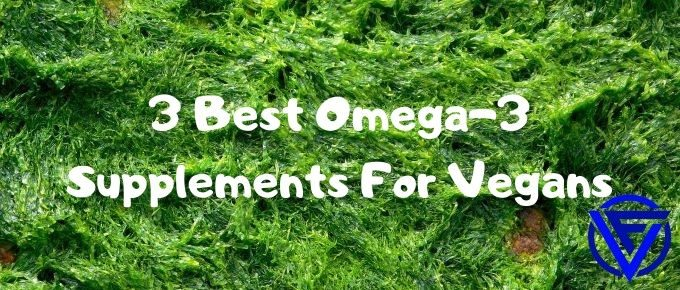 best omega 3 for vegans
