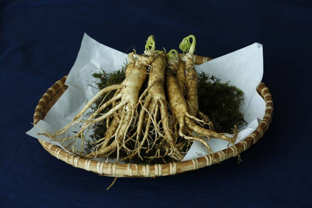 ginseng root in a bowl