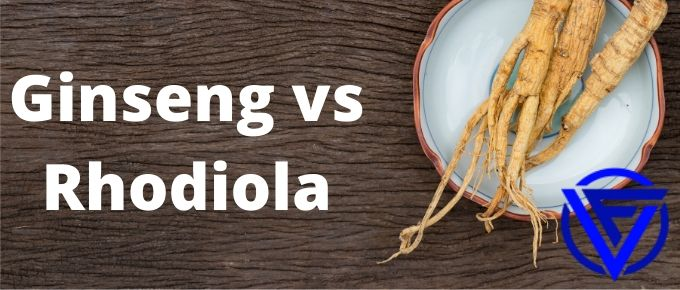 Ginseng vs Rhodiola – Which One Should You Take?
