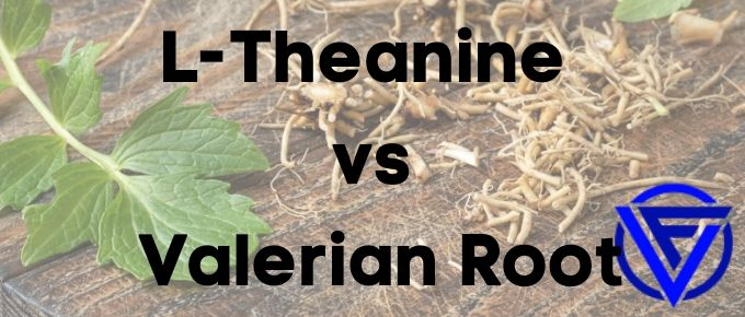 L-Theanine vs Valerian Root – Which One Should You Take?